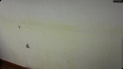 buy PVC wall panel