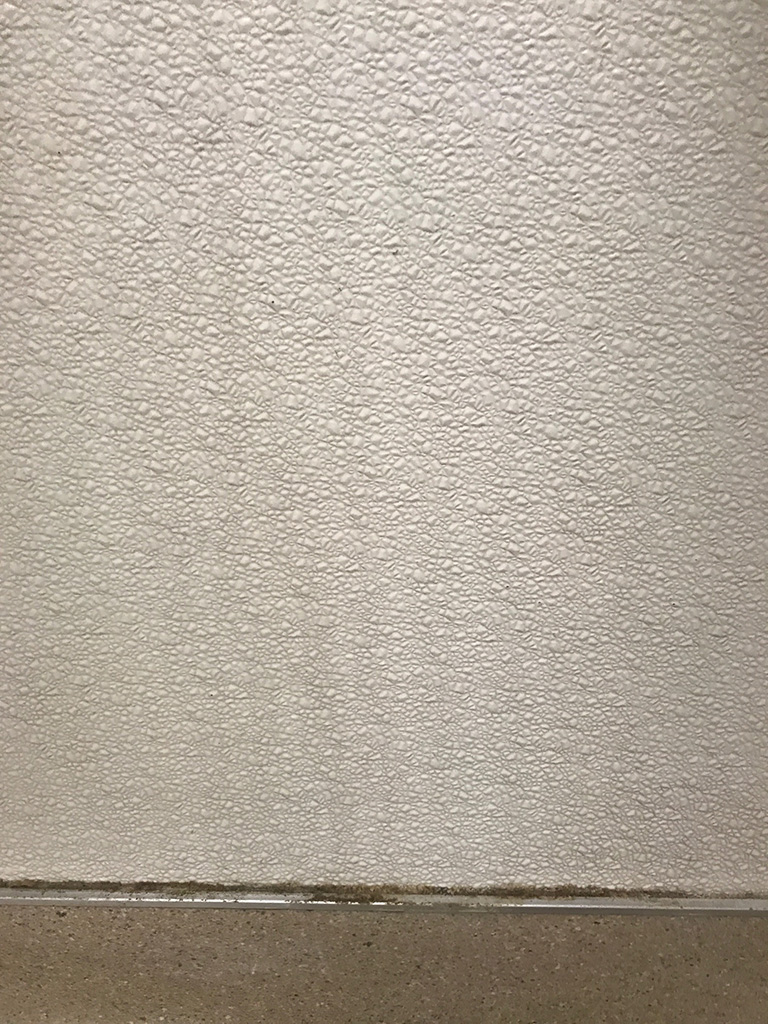 Plastic Wall Panels
